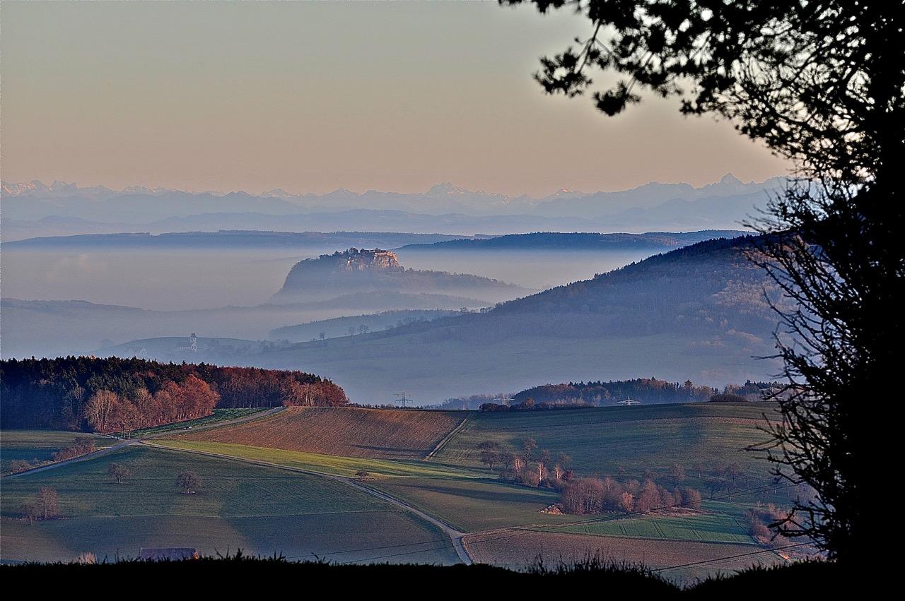 hohentwiel-berg-2